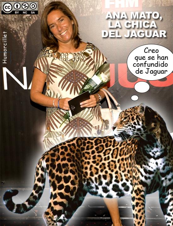 jaguar-copia