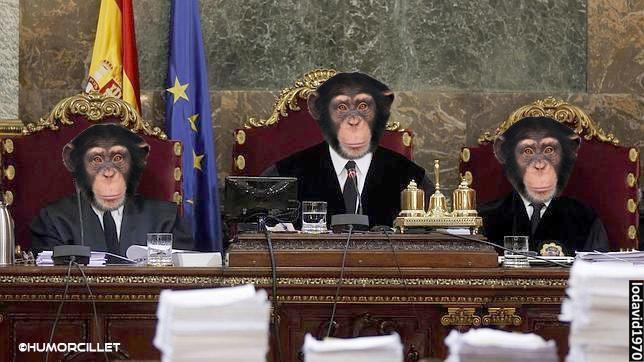 mono justicia