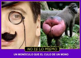 MONOCULO
