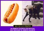 PERRITO CALIENTE