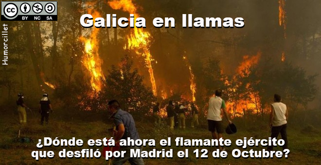 galicia llamas