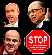 Stop a la deforestación