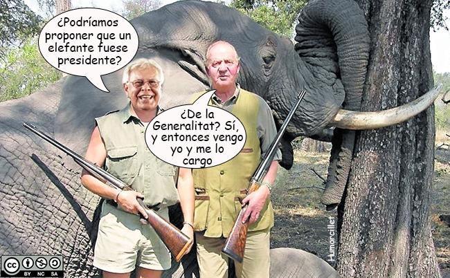 caza elefantes