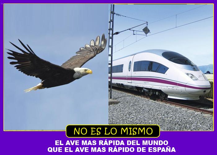 NO ES LO MISMO AVE ESPAÑA