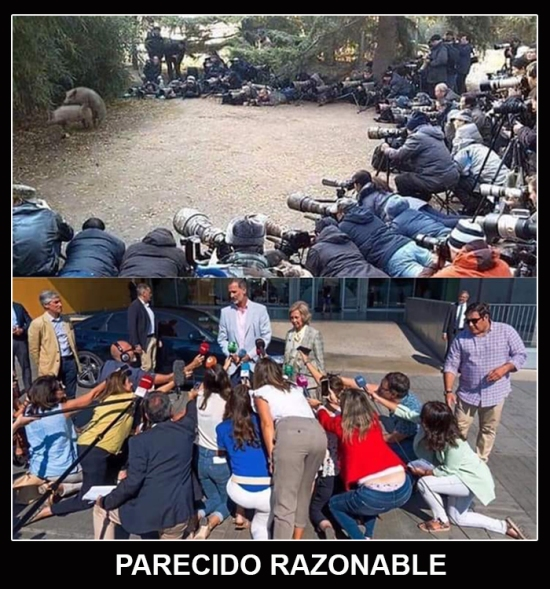 PARECIDO RAZONABLE